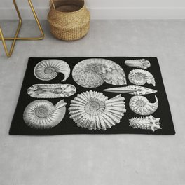 Sea Shells and Fossils (Ammonitida) by Ernst Haeckel Rug