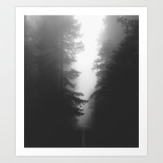 Foggy Road Art Print