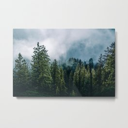 Sequoia Foggy Forest Metal Print