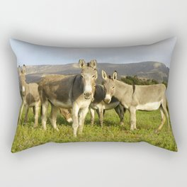 donkey band, donkey, photo, nature, perverse, band, field, lanscape Rectangular Pillow