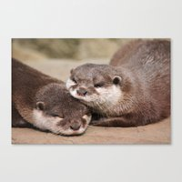 otters Canvas Prints featuring Otters 1 by Stephie Butler Photography