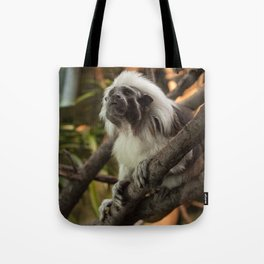 Wise Old Monkey Tote Bag