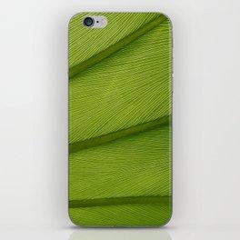 Green Leaf Texture 05 iPhone Skin