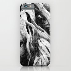 our roots go deep.  Slim Case iPhone 6s