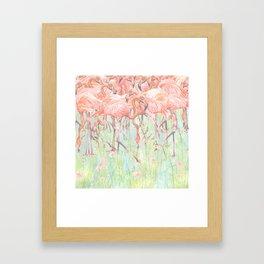 Flamingo Meadow Framed Art Print