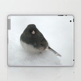 Snow Bird (Dark-eyed Junco) Laptop & iPad Skin