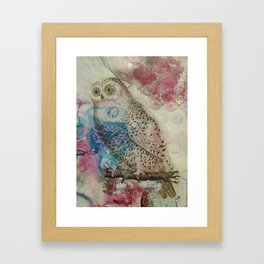 William the Wise Framed Art Print