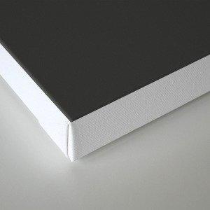 Engrams Canvas Print