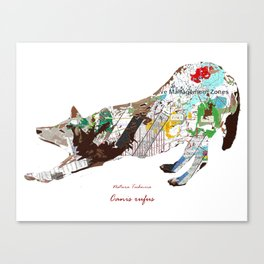 Natura Technica - Red Wolf Canvas Print
