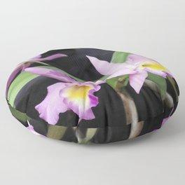 Cattleya Horace Maxima Orchid Floor Pillow