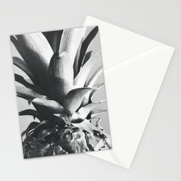 Silver Pineapple Stationery Cards