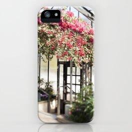 Bougainvillea in Bloom iPhone Case