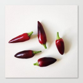 Chilies on a Benchtop Canvas Print
