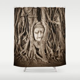 Buddha head in a Banyan Tree in Ayutthaya, Thailand Shower Curtain
