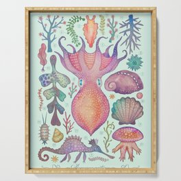 Marine Creatures IV Serving Tray