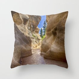 At the End of the Canyon - Grand Staircase of the Escalante - Utah Throw Pillow