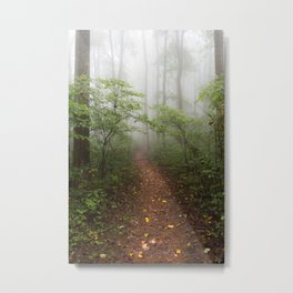 Adventure Ahead - Foggy Forest Digital Nature Photography Metal Print