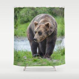 Grizzly Bear 1957 - Alaska Shower Curtain