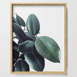 Ficus Elastica #18 #White #foliage #decor #art #society6 Serving Tray