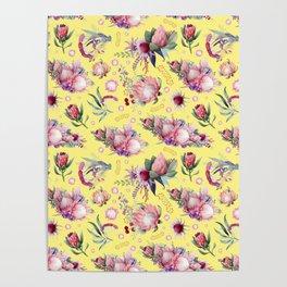 Australian Native Floral Pattern - Protea Flowers Poster