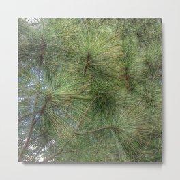 Lush Pine Needles Metal Print