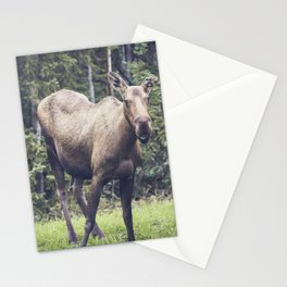 Smiling Moose, Delta Junction Alaska Stationery Cards