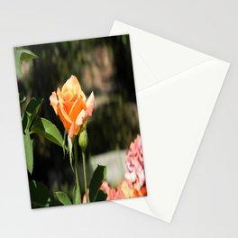Feelin' Peachy.... Stationery Cards