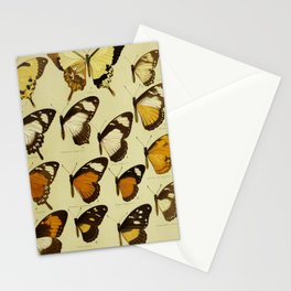 Vintage Butterfly Print - African Mimetic Butterflies (1910) - Friar Butterfly & Mimics II Stationery Cards