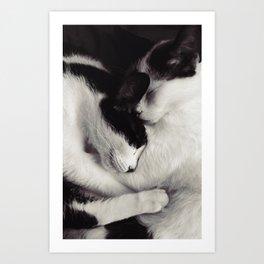 like mother, like daughter Art Print