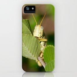 Grasshopper Spying iPhone Case