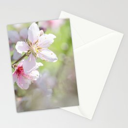 Peach Blossoms 6 Stationery Cards