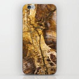 Ancient Tree iPhone Skin