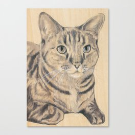 SHEILA THE CAT Canvas Print
