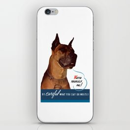 Be Careful What You Say Or Write iPhone Skin