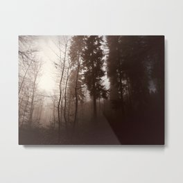 Forest shadows Metal Print