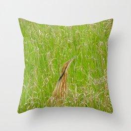 Brown Heron on the Bosque  Throw Pillow