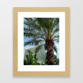 Grand Turk Palm and Building Framed Art Print