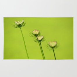 Chartreuse Queen Anne's Lace Rug