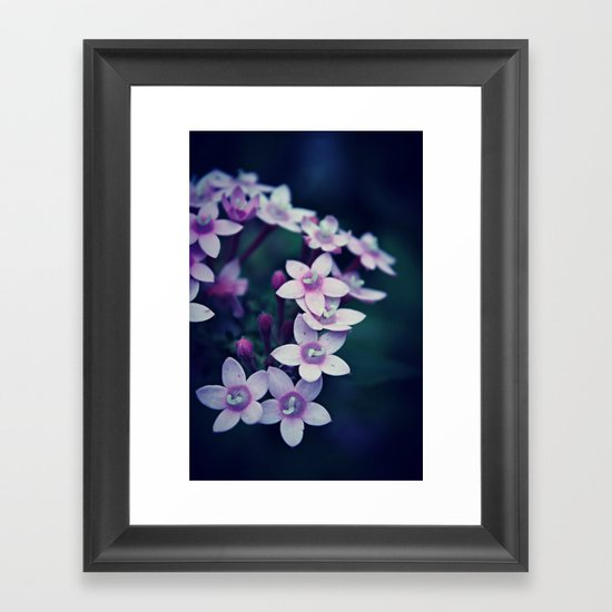Spring Flower 11 Framed Art Print