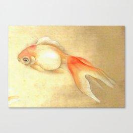 Japanese Goldfish Canvas Print