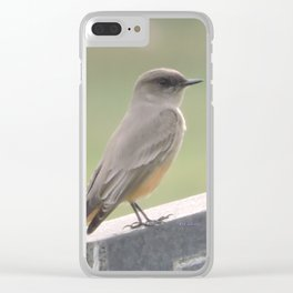 Catcher of the Fly Clear iPhone Case