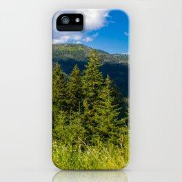 Montana Sky iPhone Case