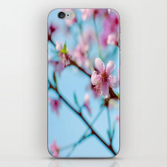Pink on Blue iPhone & iPod Skin
