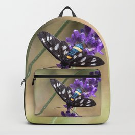 Amata Phagea on lavender Backpack