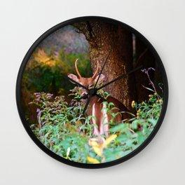 Whitetail Spike Deer Wall Clock