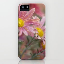 Partial sun iPhone Case