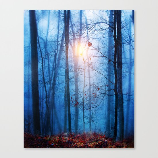 Color & Nature II Canvas Print