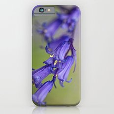 Bluebell iPhone 6s Slim Case