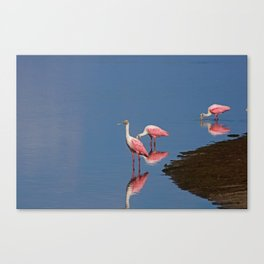 The Guide Canvas Print