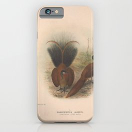 018 Northern Lyre bird harriwhitea alberti4 iPhone Case